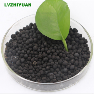 Nano organic fertilizer