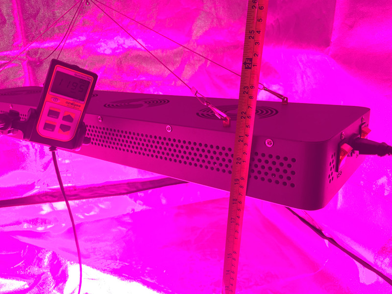 Most Popular Grow Equipment VEG/FLOWER Double switch 600w LED grow light for Agriculture