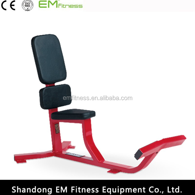 Hammer Strength Roman Chair Back Extension - Buy Roman Chair,Back  Extension,Hammer Strength Roman Chair Product on Alibaba com