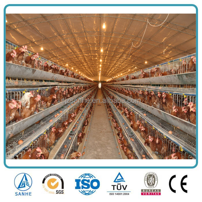 Prefabricated light steel frame poultry farm in Malaysia