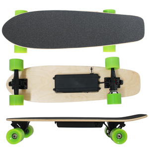 Cheap small fish electric hub motor roller skate board