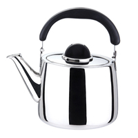 Hot Selling Wholesale Stainless Steel Whistling Glitter Water Kettle