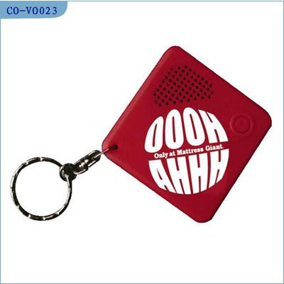 Voice recordable keychain