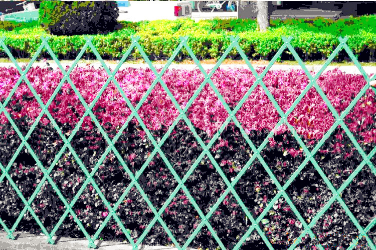 Elegant Plastic Expandable Garden Trellis/garden Fence