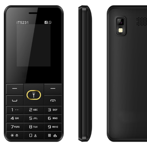 simple phone Unlocked china mobile feature phones IT5231 1 8