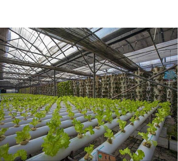 pvc material rohr g nstigen preis pflanzen hydroponischen rohr rohr zu hause ackerland. Black Bedroom Furniture Sets. Home Design Ideas