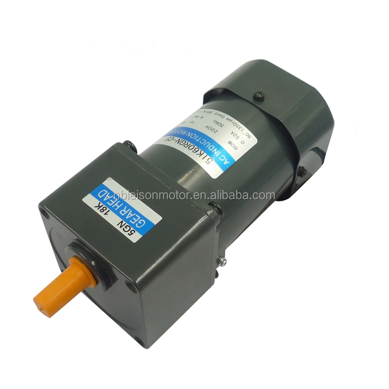 Asynchronous 110v 220v 10rpm to 500rpm small ac gear electric motor