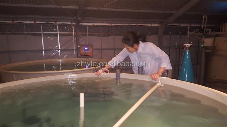 Fokken Vis voor Winst Recirculatie Waterbehandeling Systemen in Aquacultuur Visteelt