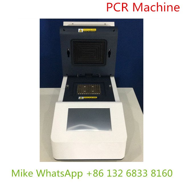 PCR machine with remarkable gradient technology for testing DNA gene MSLPCR01