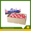 Linyi Fresh fruit red fuji apple best price exporter in china