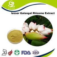 Galangal Herbal Remedies Galangal Supplements Powder Bulk