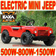 500w, 800w, 1500w Mini Jeep for Sale