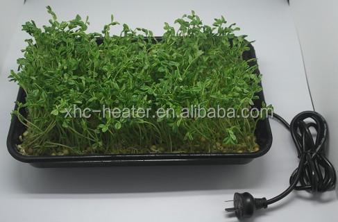 Plastic Plant Propagator