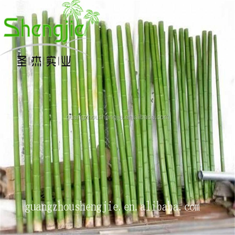 sjlj artificial grande palo de bambbamb pintado polo para la decoracin del jardn casero