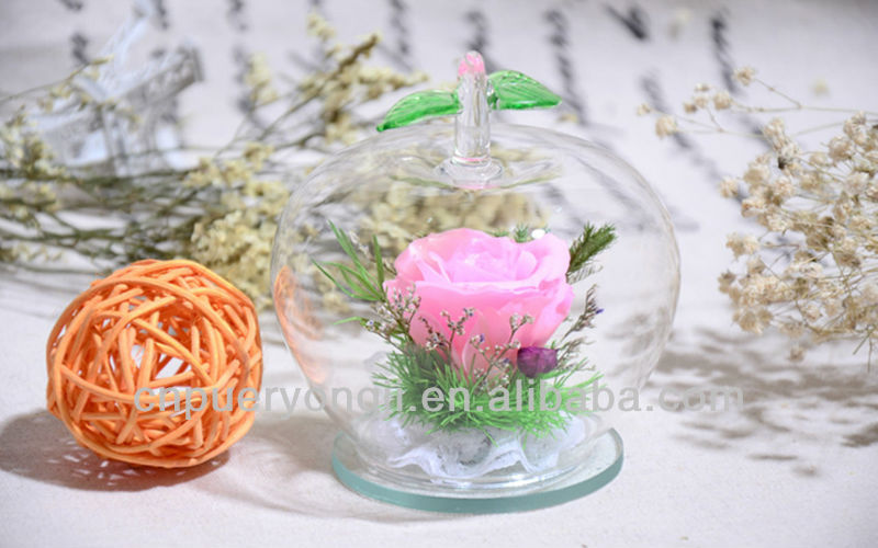 100% Natural Apple-box Preserved Dried Flowers Wholesale For Gift