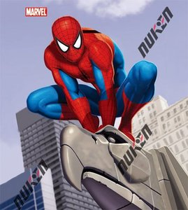 3d hot movie wall poster cartoon picture of spider-man