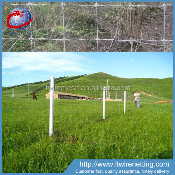 Anti Corrosion farm guard filed farm hinge joint fencing