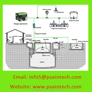 PUXIN Biogas machine to generate electricity/ small biogas plant / biogas making equipment