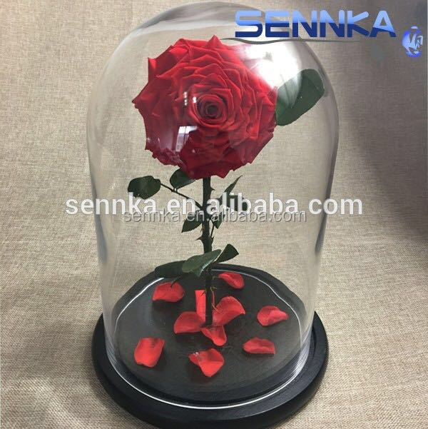 Single giant immortal rose in glass dome preserved <strong>flowers</strong> stabilized for valentine/women's day gifts