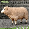 Animatronic Life Size Sheep