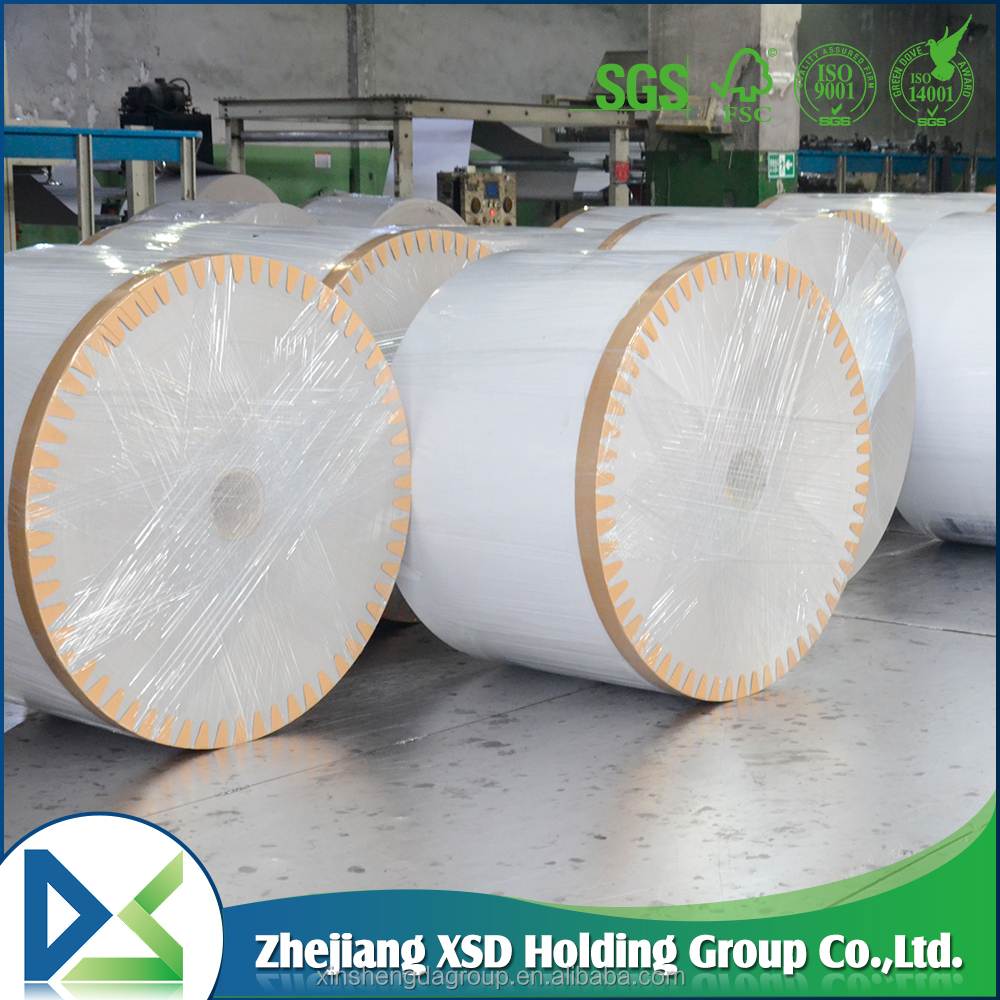 NINE DRAGON Duplex paper board in sheet/reel from china industry