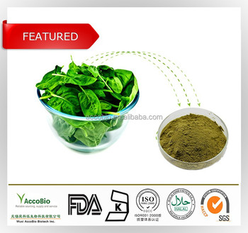 100% Natural Vegetable Extract powder, Organic Spinach Extract, Spinach Extract in bulk