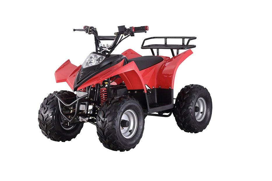 Feishen Kids electric ATV 36V 500W ATV CE certificate electric ATV (FA-EA501)