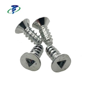 Metal Countersunk Head Cold forged Security Screws