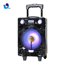 8 Inch Portable Trolley Speaker System With Flash Lantern