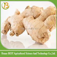 well to buy dried ginger product