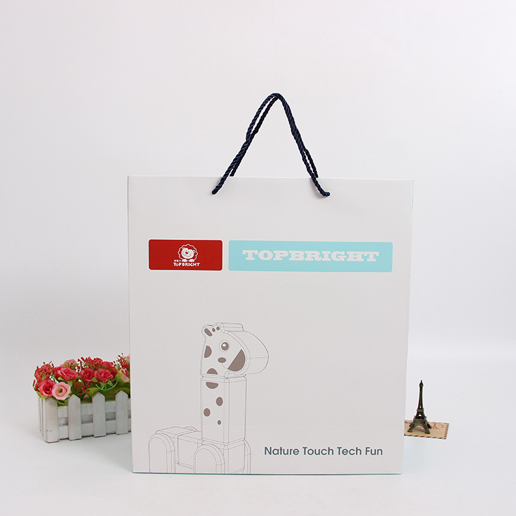 Eco friendly Low Cost bBrand Art Paper Carrier Bag Custom Print