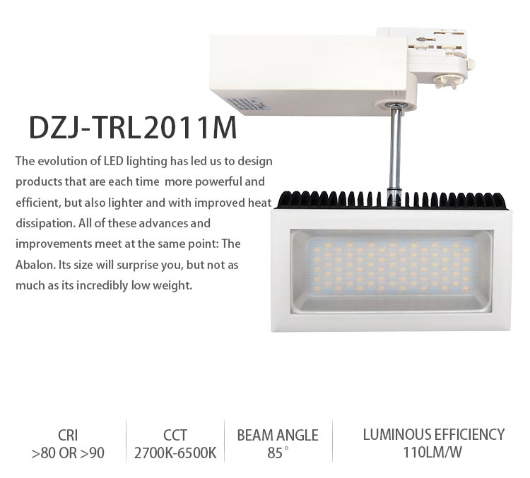Shopping Mall Centre Special Design Silver Housing 10W COB LED Track Light