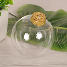 Manufacturers wholesale injection Christmas transparent plastic hanging decoration ball