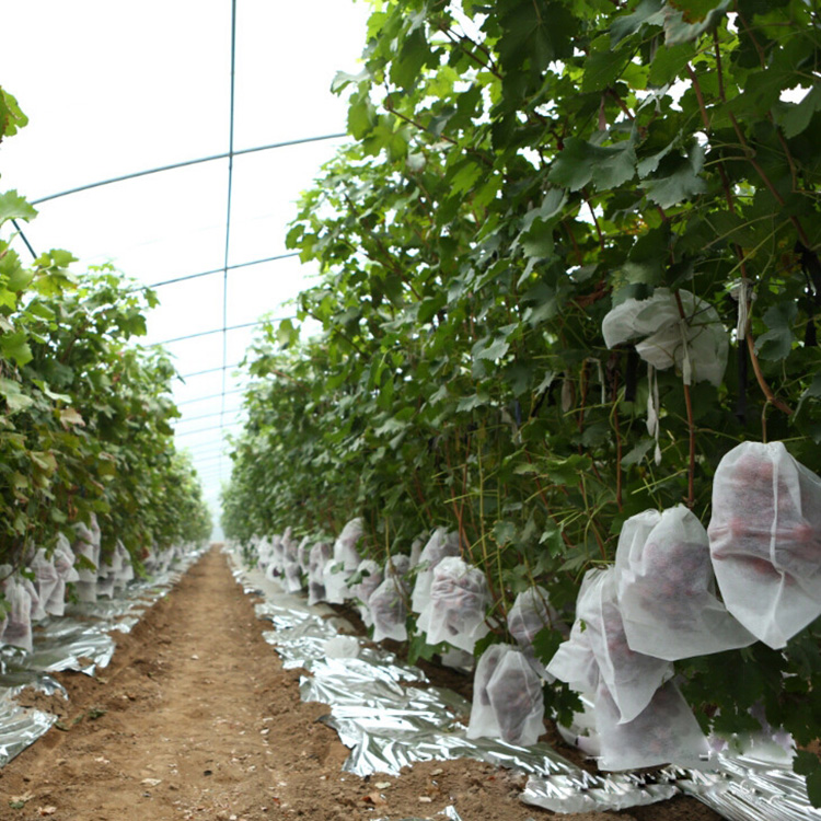 Hot Selling And Best Price Nonwoven Fruit Cover Grow Plant Bag