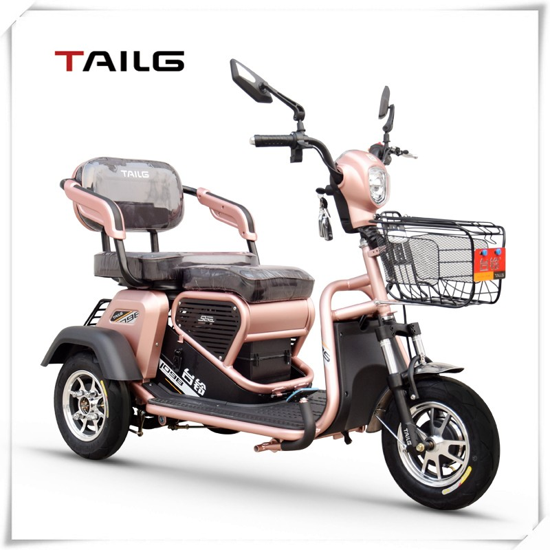 TAILG cheap two seats adult electric 3 wheel motorcycle for entertainment