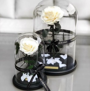 High quality display glass dome, clear glass box for rose