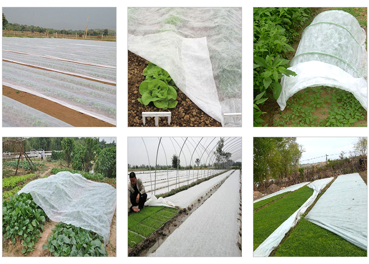 Anti Insect. Grape Protection Bag Cover Fruit Tree Nonwoven Fabric China Factory
