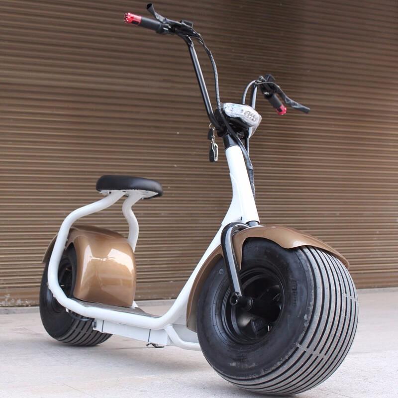 2017 Coolest Eec Electric Fat Bike Frame 1000w Adult