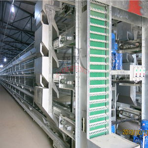 High-quality new production dimension for 30000 chicken layer cage cages in india
