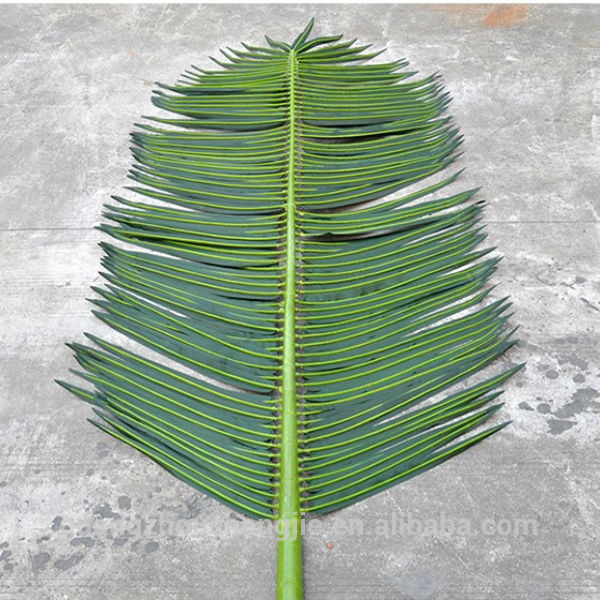 Q072606 Outdoor Uses Of Artificial Palm Tree Leaves