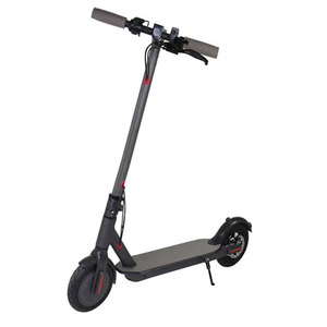350w Fat Tyre E-Scooter Folding Electric Scooter with Free Disk Brake Lock