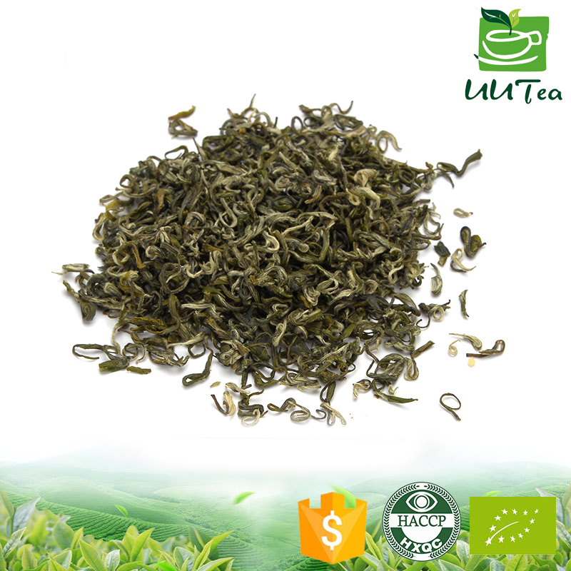 High grade quality factory price organic Chinese green tea wholesale China maojian tea