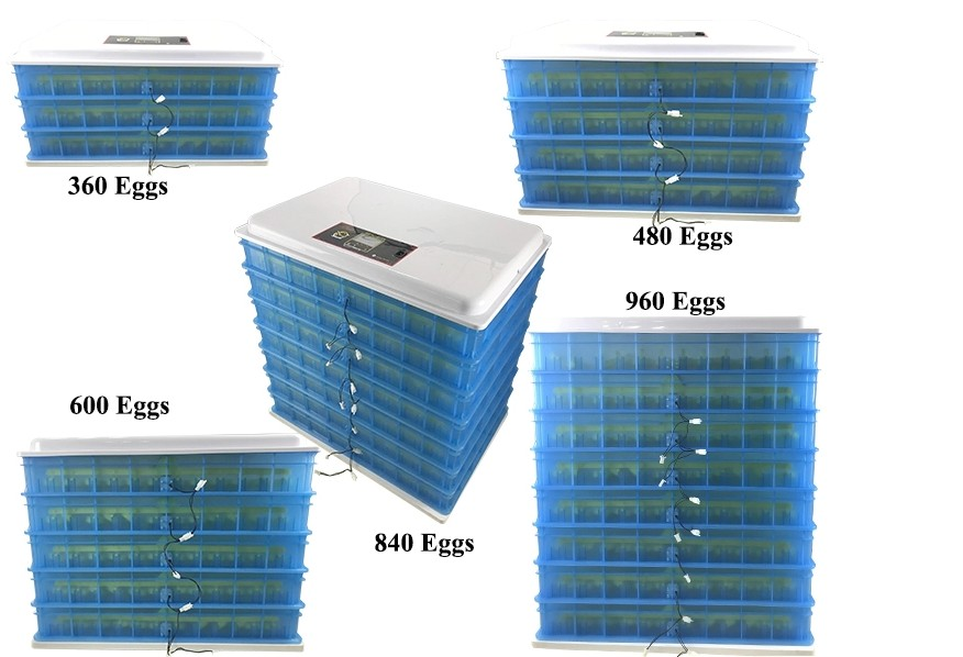 HHD cheap shipping price automatic holding 1320 eggs poultry egg incubator