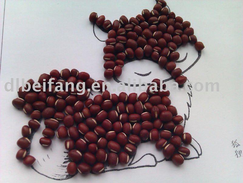 Chinese Small Red Bean/adzuki Bean( New Crop,Heilongjiang Origin ...