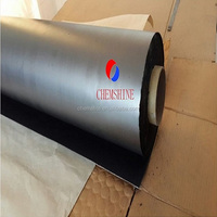 High Thermal Conductive Expandable Graphite Foil Paper in Roll