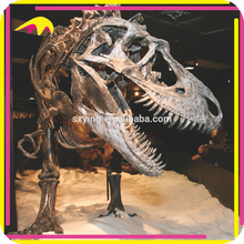KANO8359 Outdoor Playground High Quality Resin Dinosaur Skeleton Model