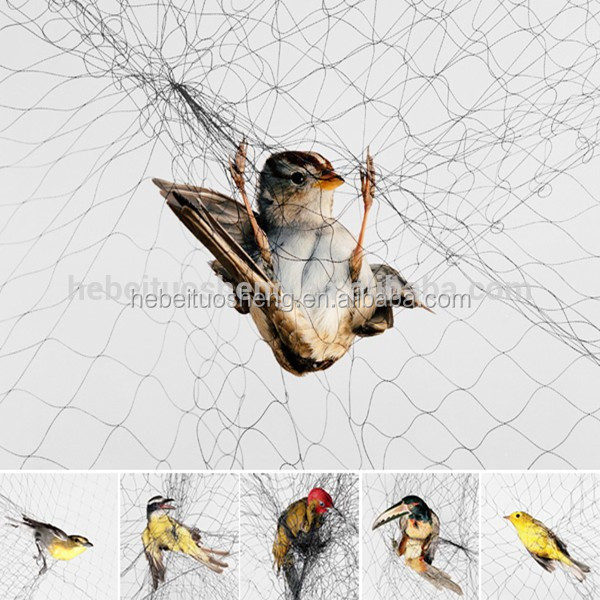 Nylon Bird trap net for catching nets
