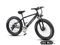 26 inch 36V folding mountain electric bicycle