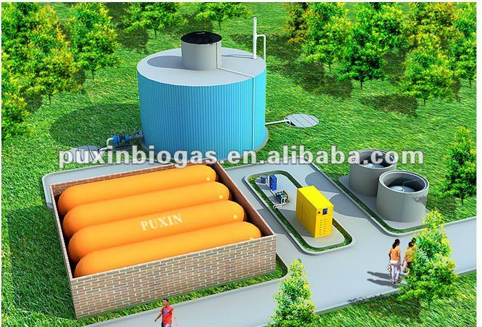 Puxin 100m3 biogas digester for power