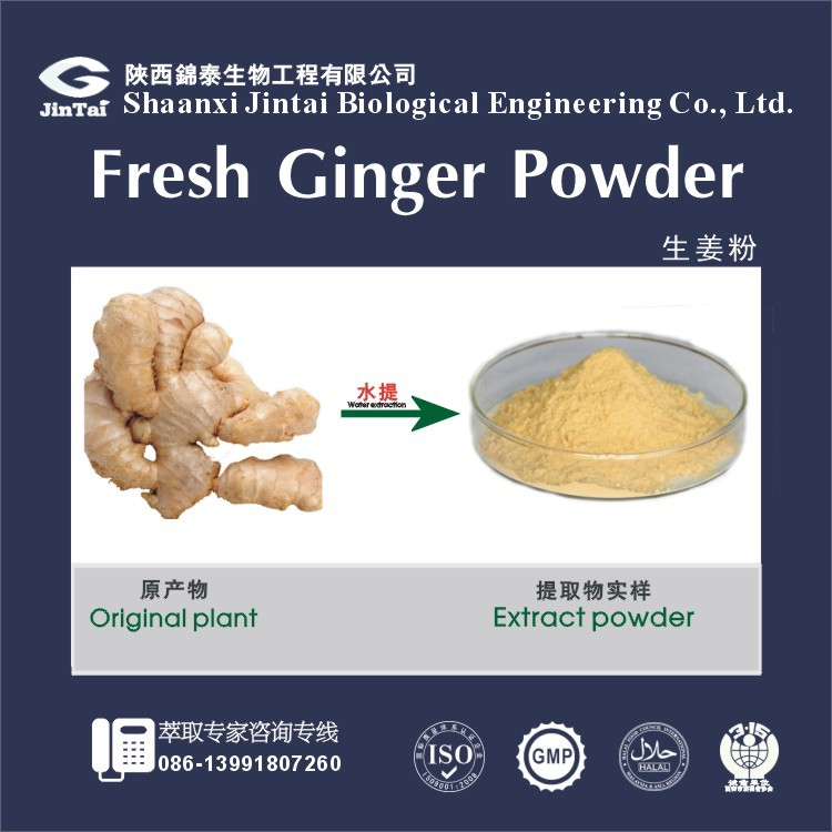 water soluble dried ginger powder price